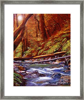 Creek Crossing Framed Print by David Lloyd Glover