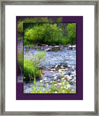 Framed Print featuring the photograph Creek Daisys by Susan Kinney