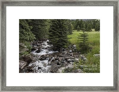 Creek Flows Through Framed Print