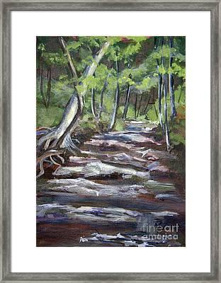 Creek In The Park Framed Print