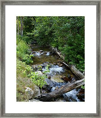 Framed Print featuring the photograph Creek On Mt. Spokane 1 by Ben Upham III
