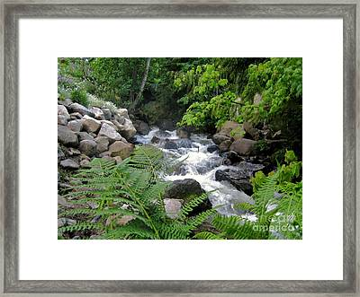 Creek Framed Print by Reb Frost