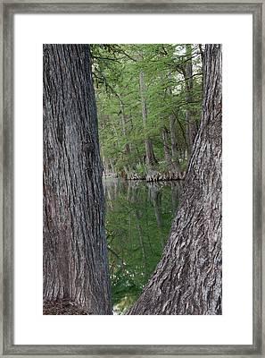 Creek Reflections Framed Print