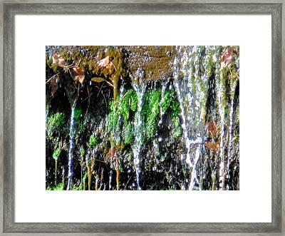 Creek Running Through Moss-covered Stones 2 Framed Print