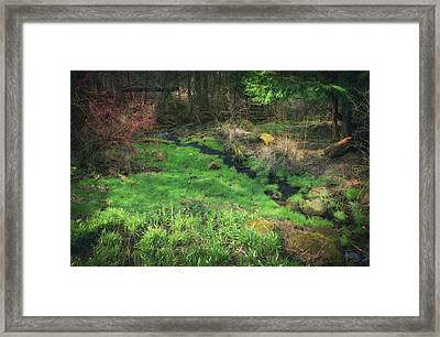 Creek - Spring At Retzer Nature Center Framed Print by Jennifer Rondinelli Reilly - Fine Art Photography
