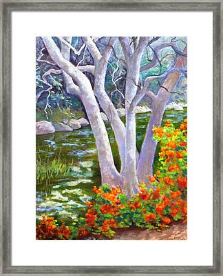 Creekside Framed Print by Dorothy Nalls