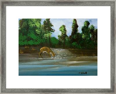 Creekside Drink Framed Print