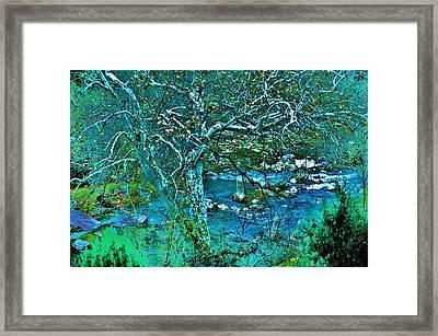 Creekside Framed Print