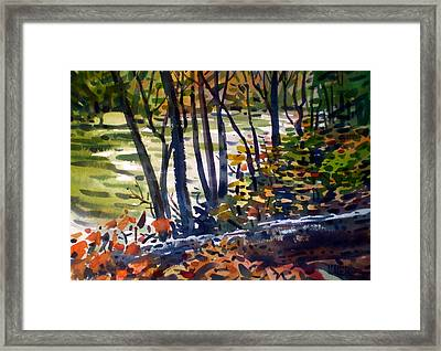 Creekside Tranquility Framed Print by Donald Maier