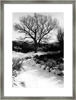 Creekside Winter Framed Print