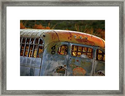 Framed Print featuring the photograph Creepers by Trish Mistric