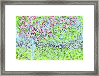 Crepe Myrtle 2 Kmcelwaine Framed Print