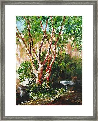 crepe myrtle SOLD Framed Print