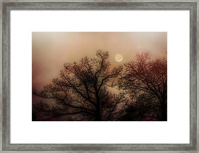 Crescent Between The Trees Framed Print by Bob Orsillo