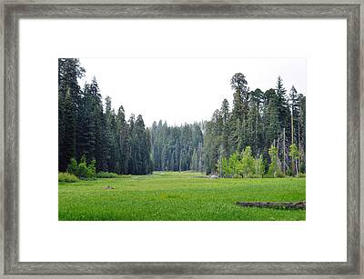 Framed Print featuring the photograph Crescent Meadow by Kyle Hanson