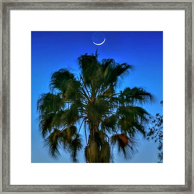 Crescent Over Palm Framed Print by Marvin Spates
