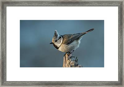 Framed Print featuring the photograph Crest by Torbjorn Swenelius