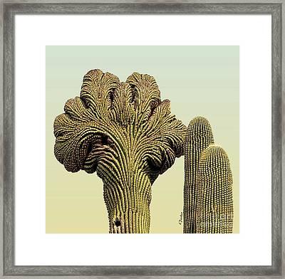 Crested Saguaro - 1 Framed Print by Linda Parker