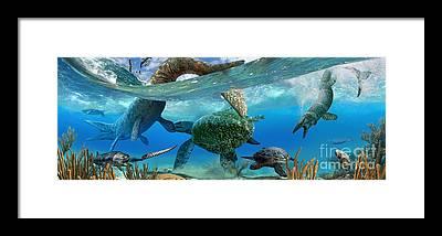 Cretaceous Framed Prints