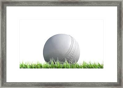 Cricket Ball Resting On Grass Framed Print by Allan Swart