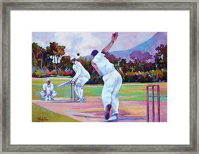 Cricket In The Park Framed Print