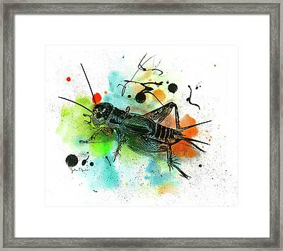 Framed Print featuring the drawing Cricket by John Dyess