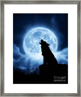 Cries Of The Night Framed Print by Julie Fain