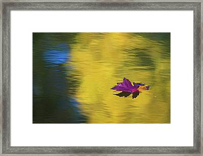 Framed Print featuring the photograph Crimson And Gold by Steve Stuller