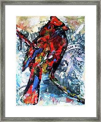 Crimson Cardinal Framed Print
