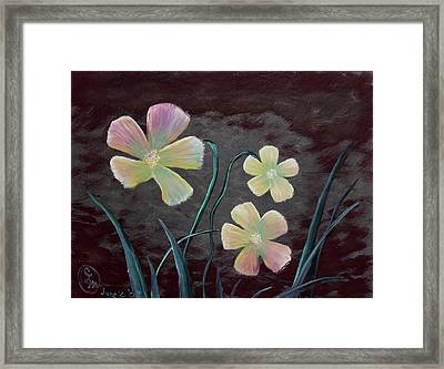 Crimson Flower Framed Print
