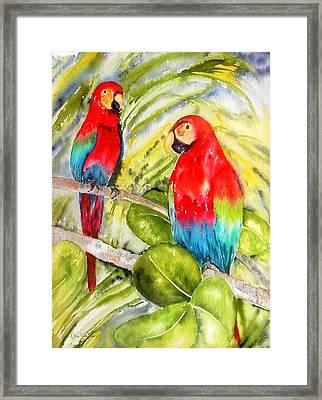 Crimson Macaws Framed Print