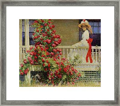 Crimson Rambler Framed Print by Philip Leslie Hale