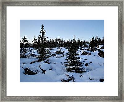 Crisp Clear Morning Framed Print by Marilynne Bull