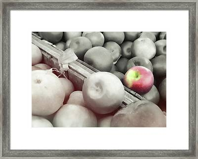 Crisp Harvest Framed Print by JAMART Photography