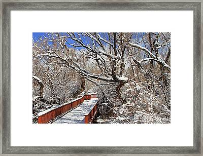 Crisp March Morning At The Park Framed Print by Donna Kennedy