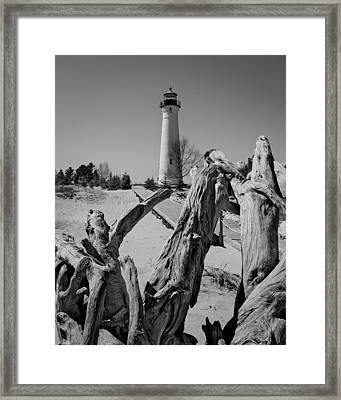 Crisp Point Lighthouse With Driftwood Framed Print