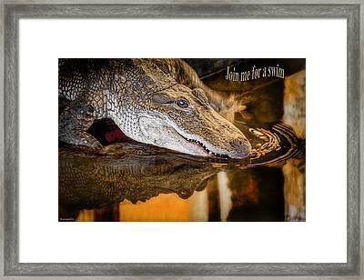 Croc Join Me For A Swim Framed Print by LeeAnn McLaneGoetz McLaneGoetzStudioLLCcom