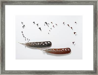 Croce Ircles Framed Print by Chris Maynard