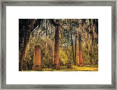 Crocheron Columns Old Cahawba Framed Print by Phillip Burrow
