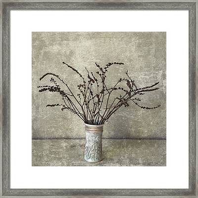 Crocosmia Seed Pods Framed Print by Carol Leigh