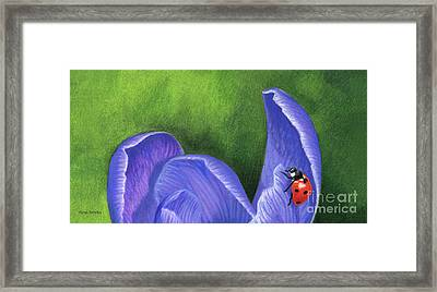 Crocus And Ladybug Detail Framed Print
