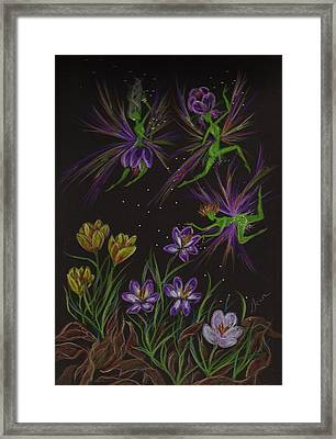 Crocus Framed Print by Dawn Fairies