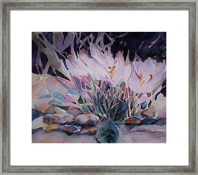 Framed Print featuring the painting Crocuses by Mindy Newman