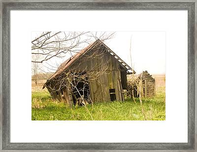 Crooked Framed Print