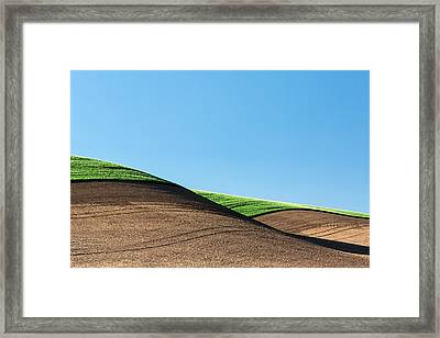 Crop Top Framed Print by Todd Klassy