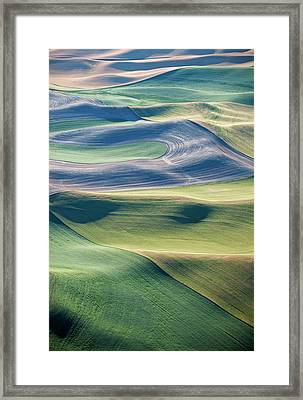 Crops And Contours Framed Print