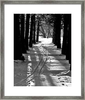 Cross Country Tracks Framed Print by Ralph Steinhauer