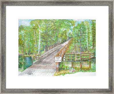 Cross Creek The Forest Framed Print by Hal Newhouser