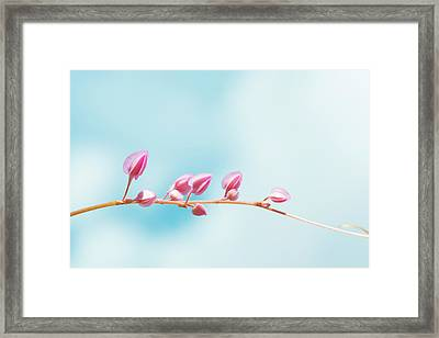 Cross The Life  Framed Print by Nam Tran
