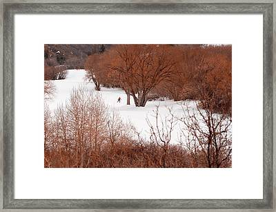 Crosscountry Skier Framed Print